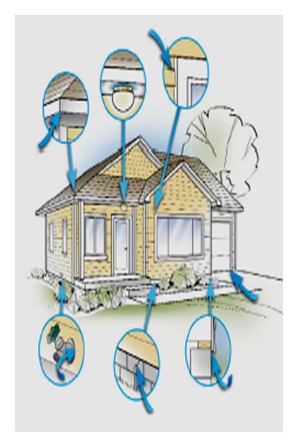 Pest Treatments Clip Art.
