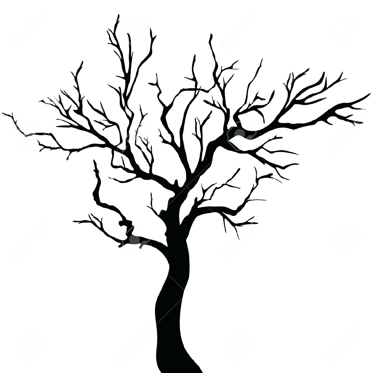 Images Of Tree Branches Clipart.