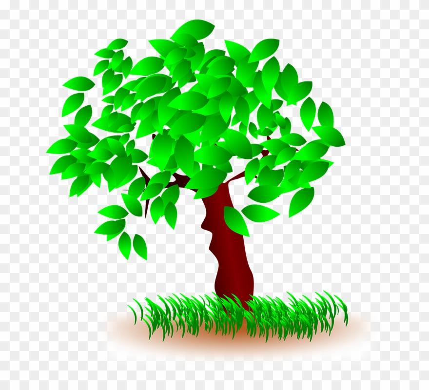 Spring Tree Cliparts 9, Buy Clip Art.