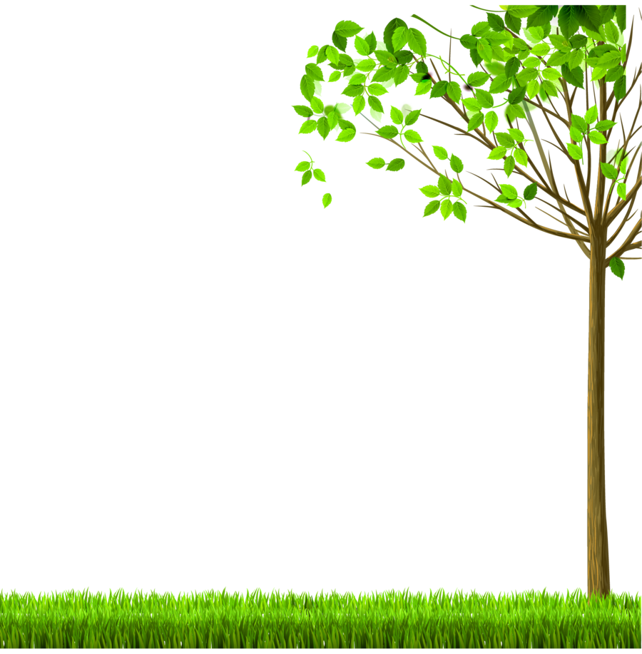 Family Tree Background clipart.