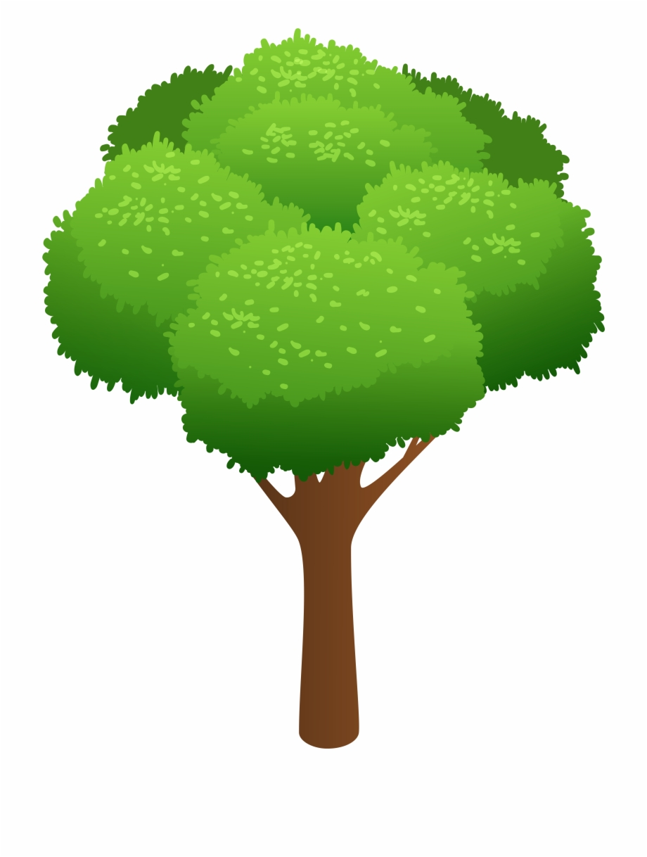 Tree And Grass Clipart 12 Clip Art Trees Free PNG Images.