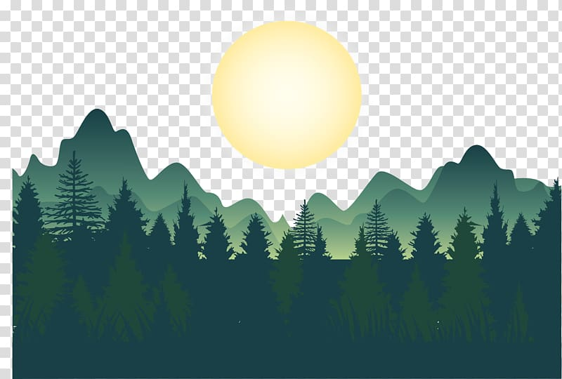 Forest , Night deep forest mountains , green trees, mountain.