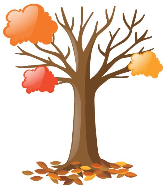 Autumn White Tree Path Clip Art, Vector Images & Illustrations.