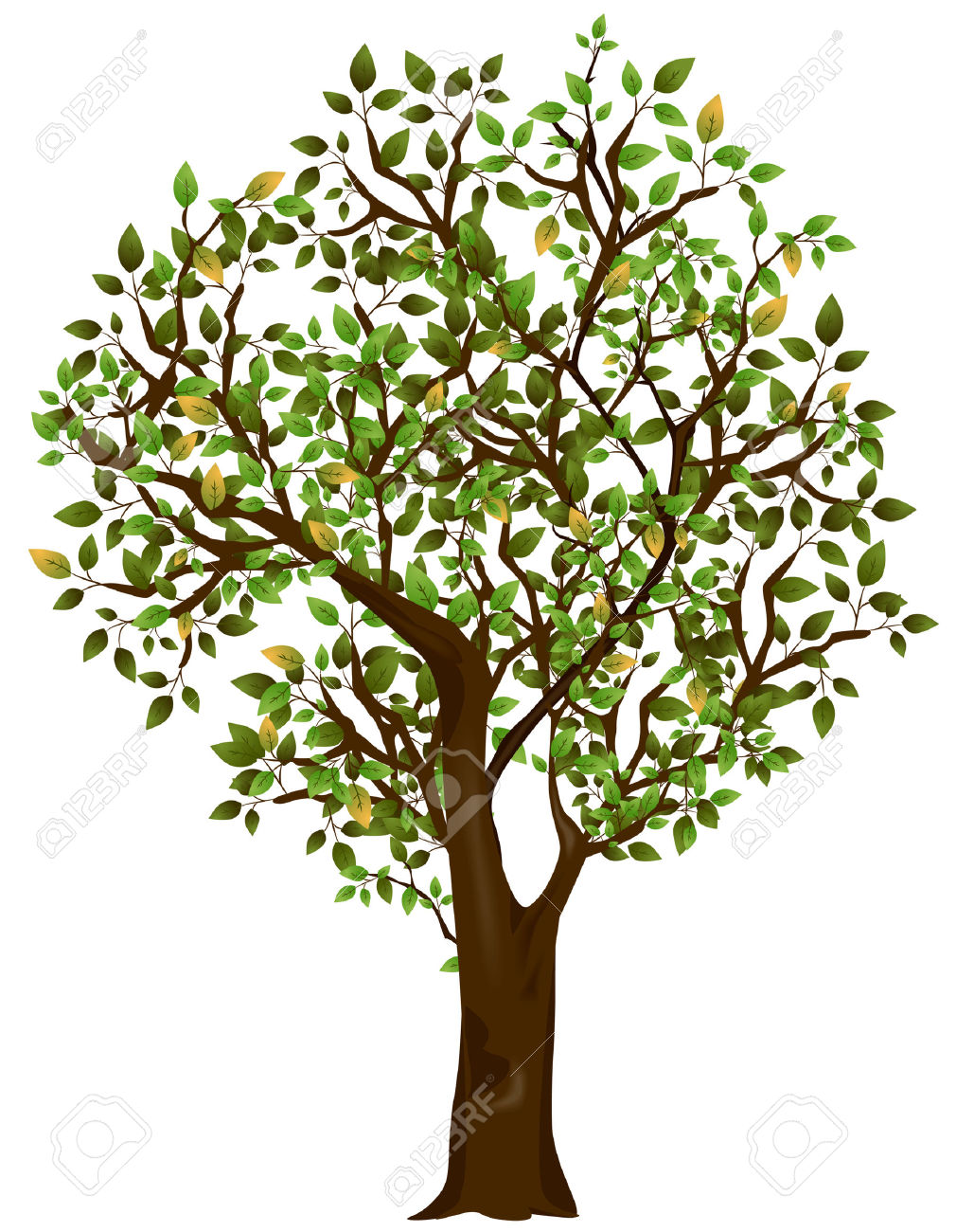 Tree Illustration With Clipping Path Royalty Free Cliparts.