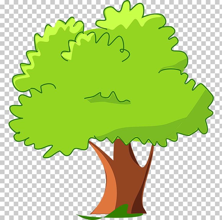 Tree Cartoon , mango , green leafed tree art PNG clipart.