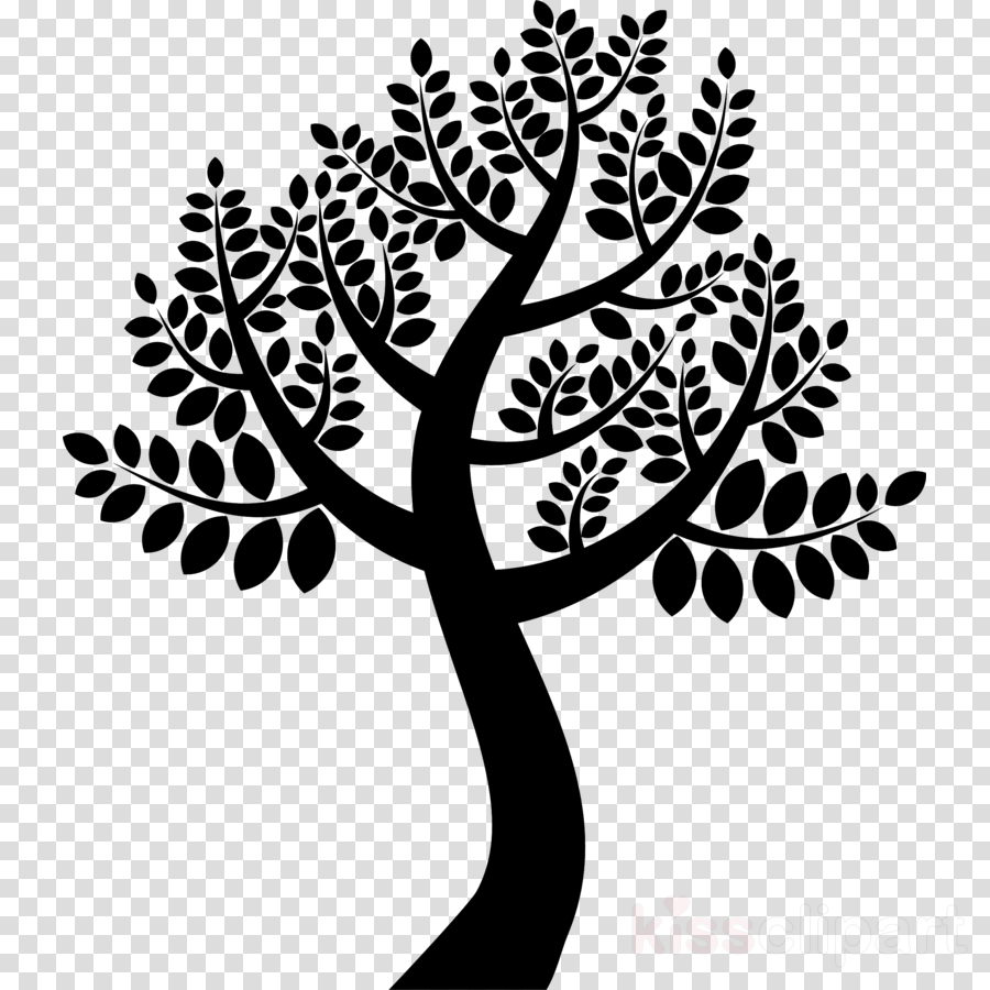 Neem Tree Drawing clipart.