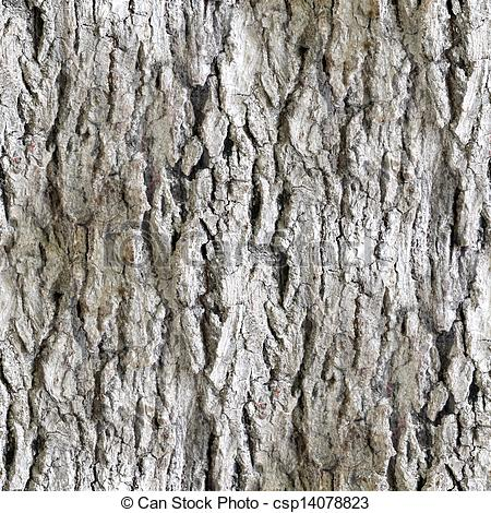 seamless texture white tree bark wallpaper background.