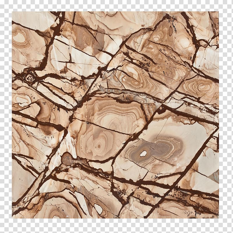 Marble Bark, Bark ring marbling free transparent background.