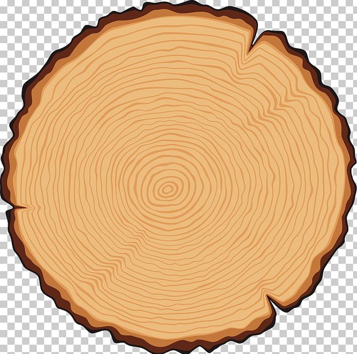 Tree Trunk Cross Section Illustration PNG, Clipart.