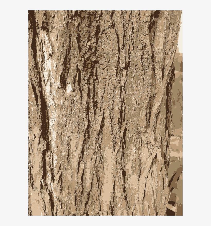 Tree Bark Texture Transparent PNG.