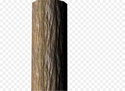 Bark PNG.