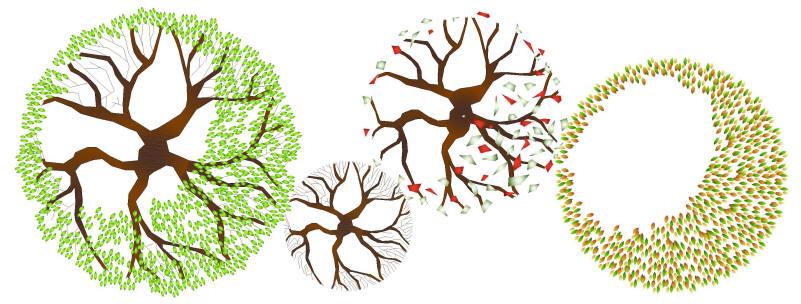 Showing post & media for Evergreen tree cad symbols.