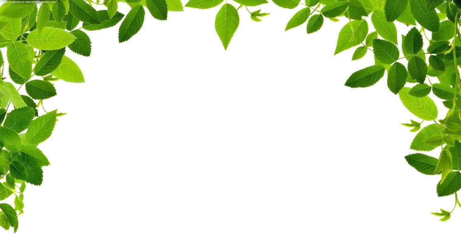 Tree border clipart 5 » Clipart Station.