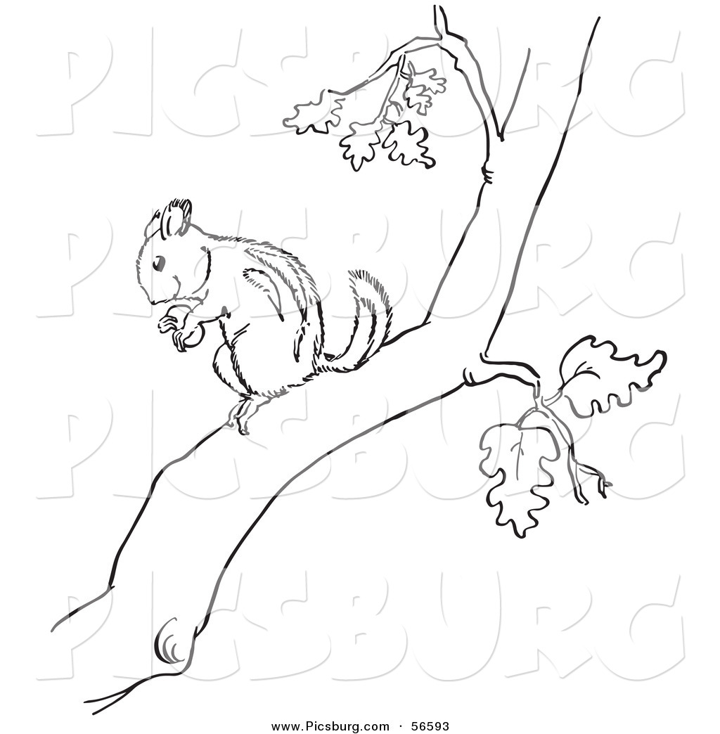 Black And White Tree Branch Clipart.