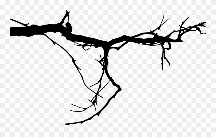 Branches At Getdrawings Com.