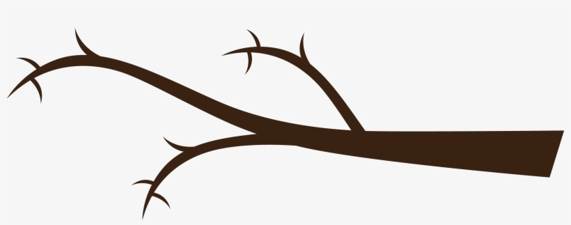 Tree Branch Png.