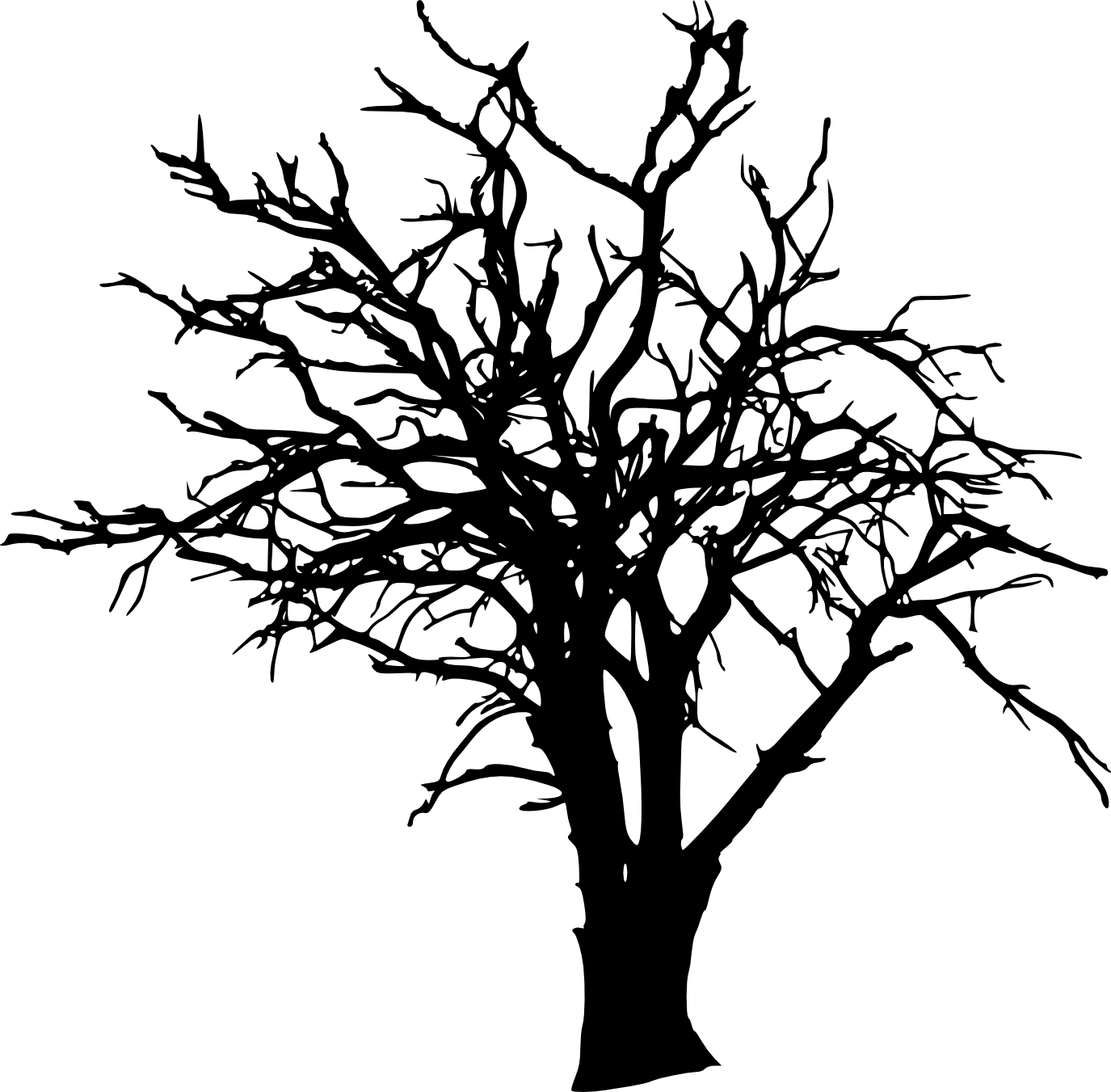 Tree Branch Clip art.