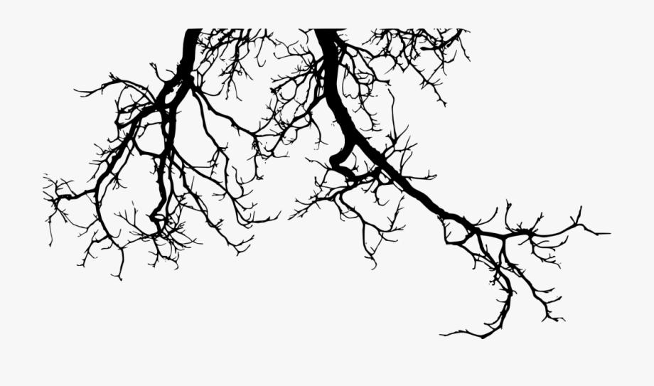 Drawing Branches Creepy.