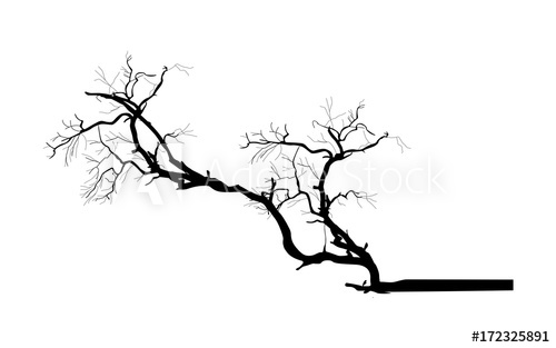 Tree Branch Vector Silhouette.