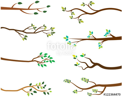 Collection of free Branch vector tree limb. Download on.
