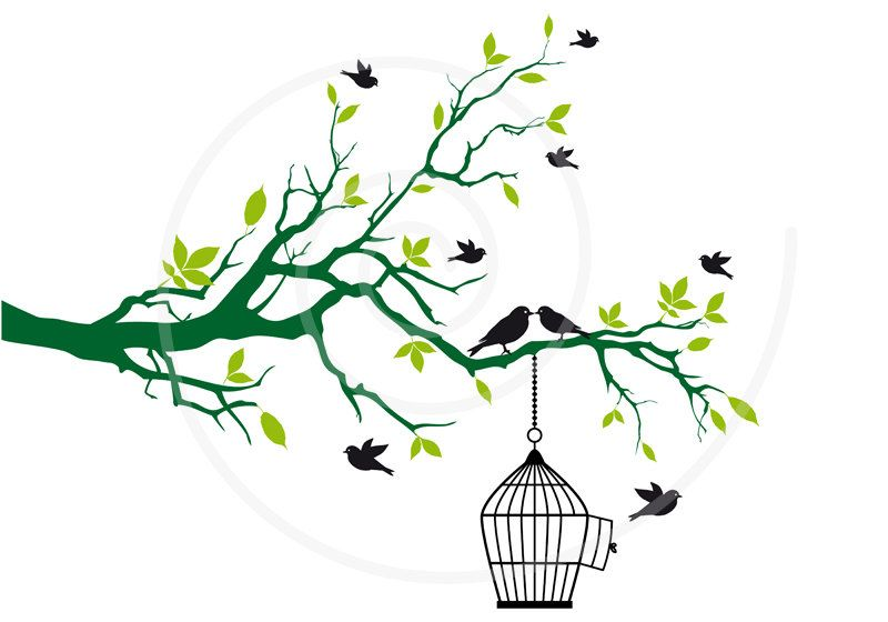 Free birds with open birdcage on tree branch with green.