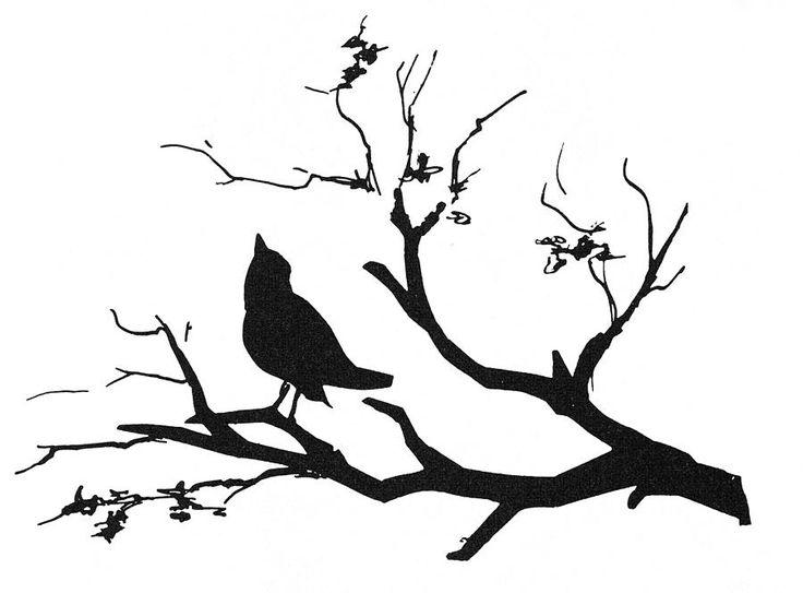Birds On Tree Drawing.