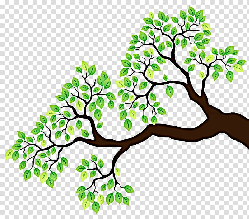 Branch Tree Drawing , branches transparent background PNG.