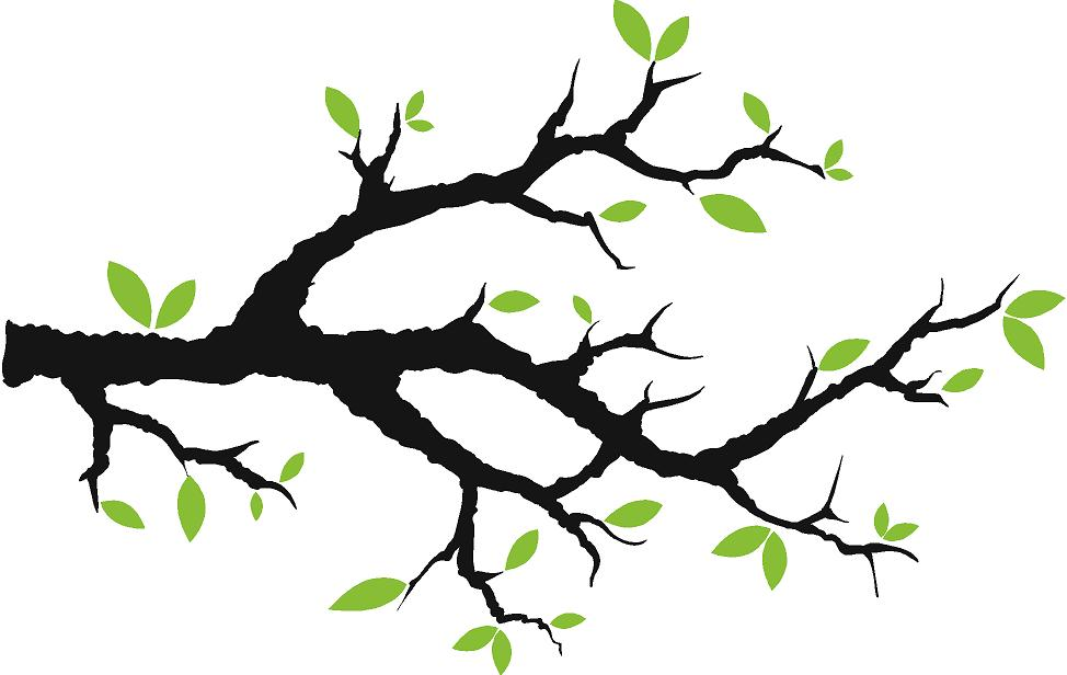 Free Picture Of A Tree Branch, Download Free Clip Art, Free.