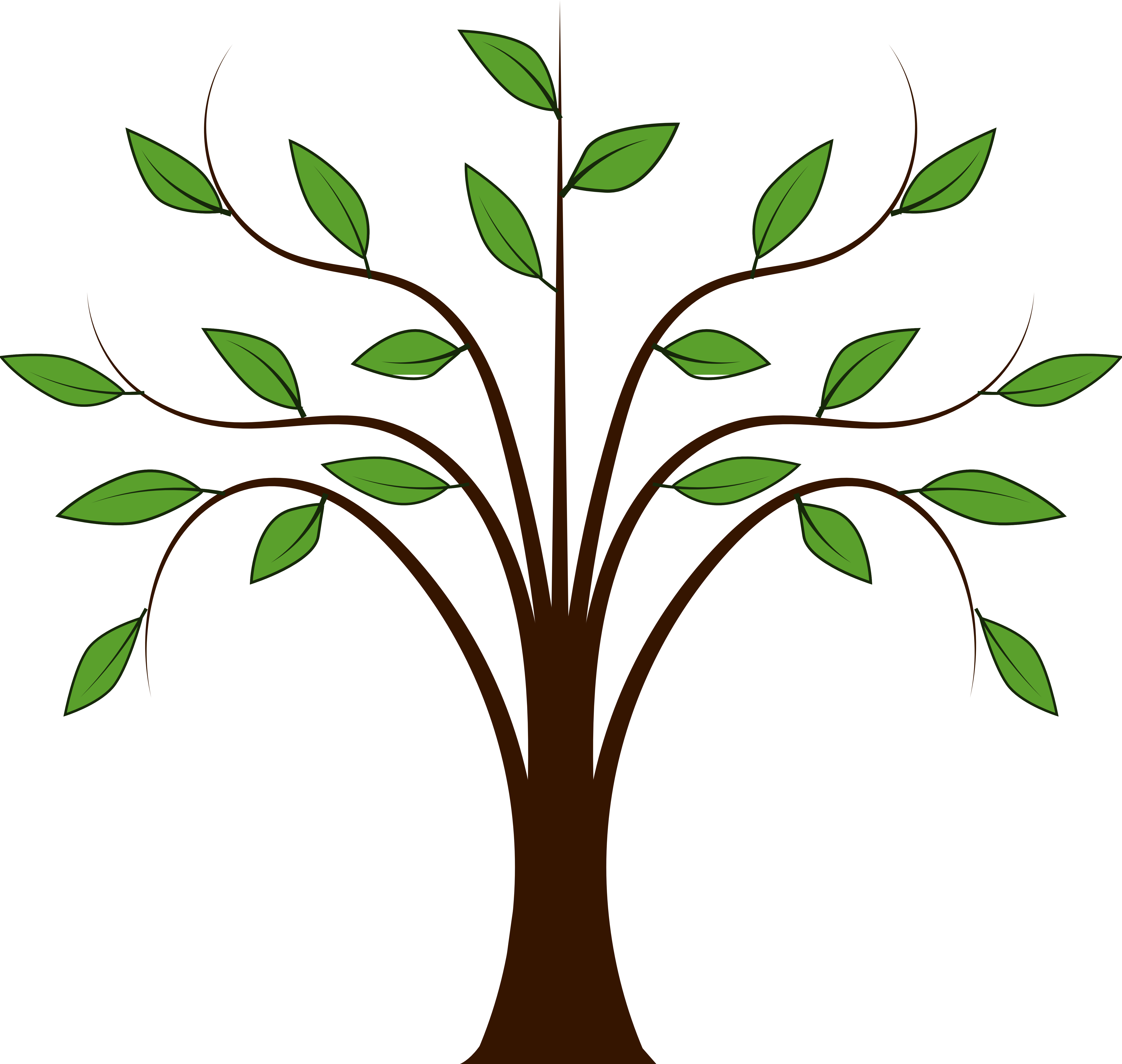 Family tree branches clipart.