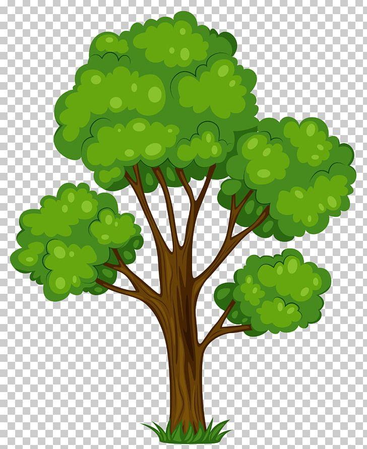 Tree Shrub Cartoon PNG, Clipart, Blog, Branch, Cartoon.