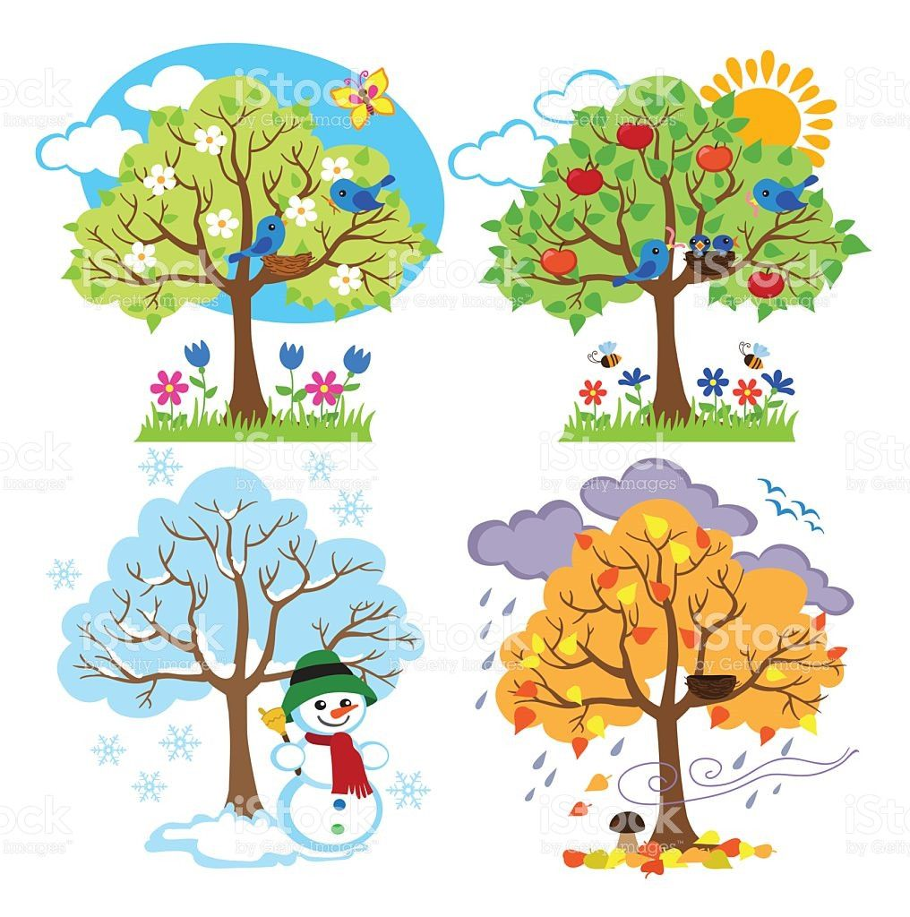 Image result for four seasons drawing for school.