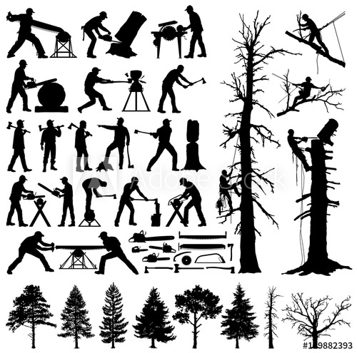 Lumberjack, tree climber, tools and trees editable vector.
