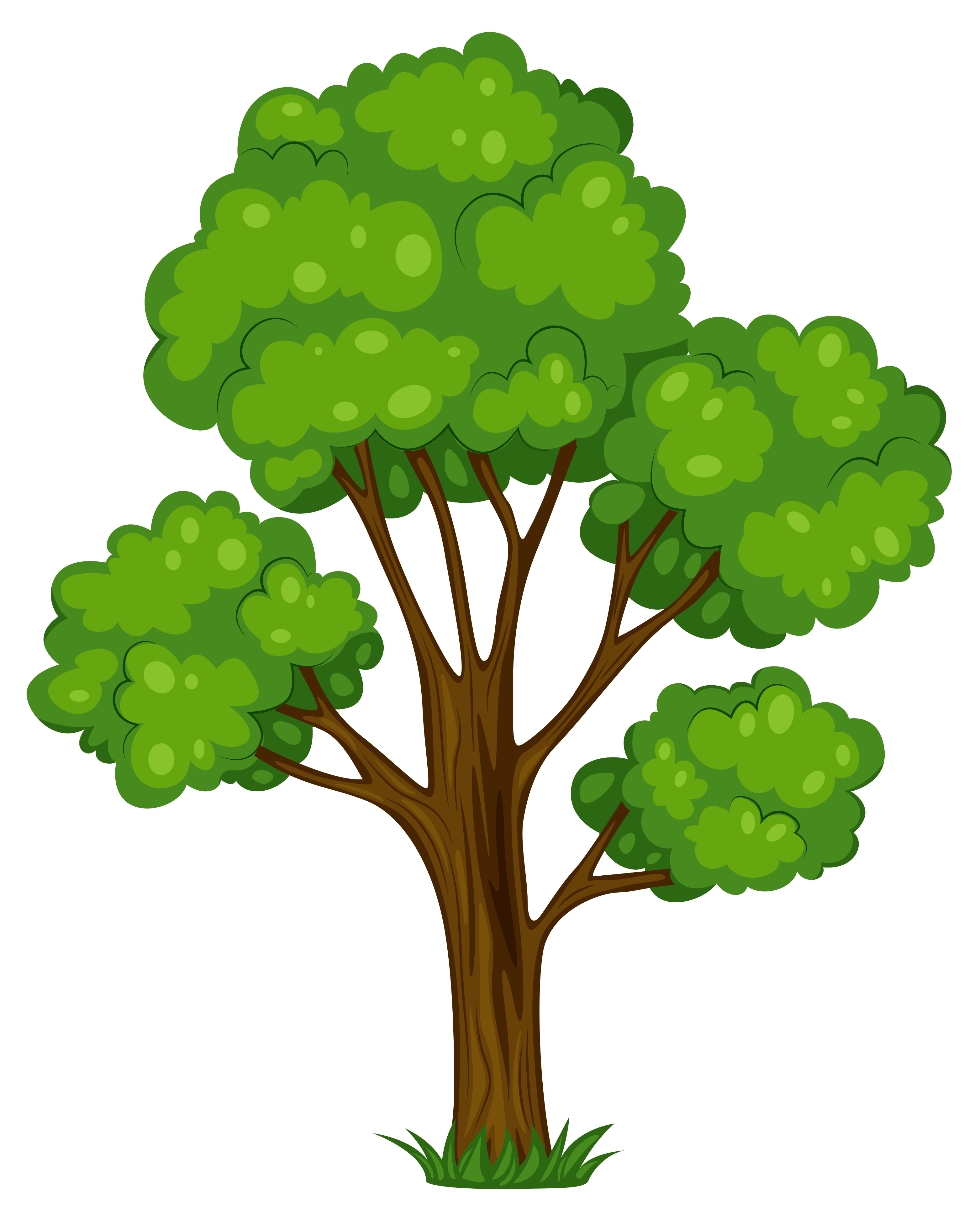 Tree Clipart & Tree Clip Art Images.