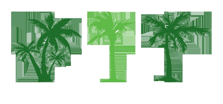 Tree Evergreen Arecaceae Clip art.