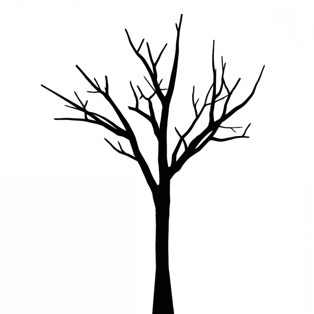 Tree No Leaves Clipart Black And White.