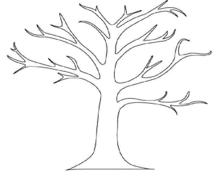 Tree clipart black and white no leaves 4 » Clipart Station.