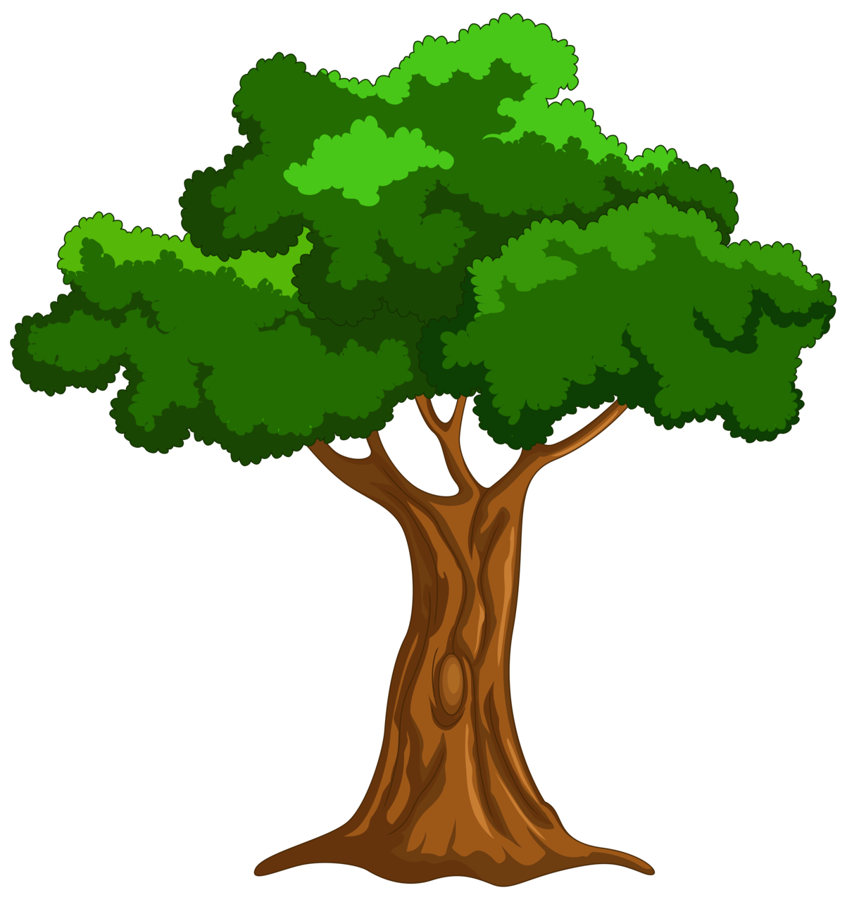 30 Tree cliparts png format for free download on Saurabh.