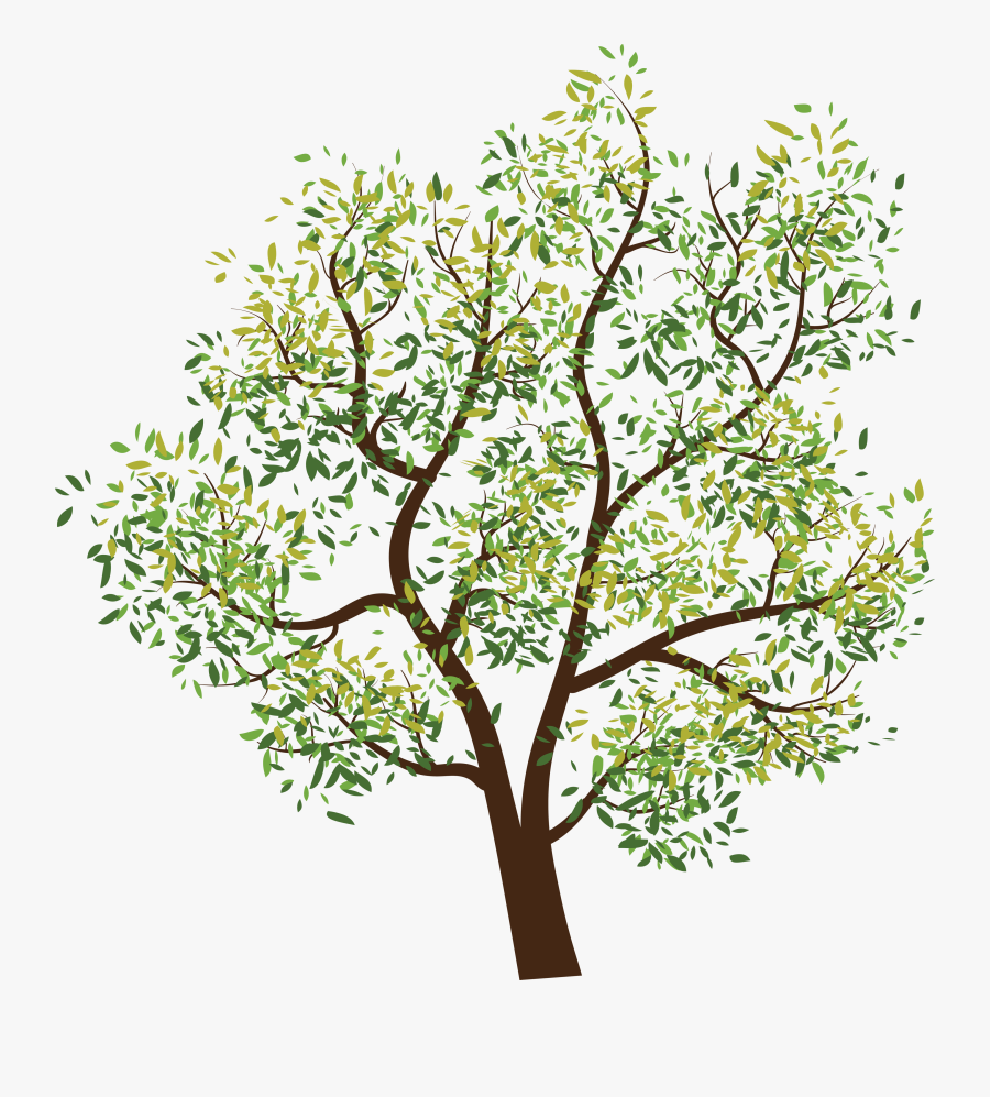 Branch Clipart Tree Paper.