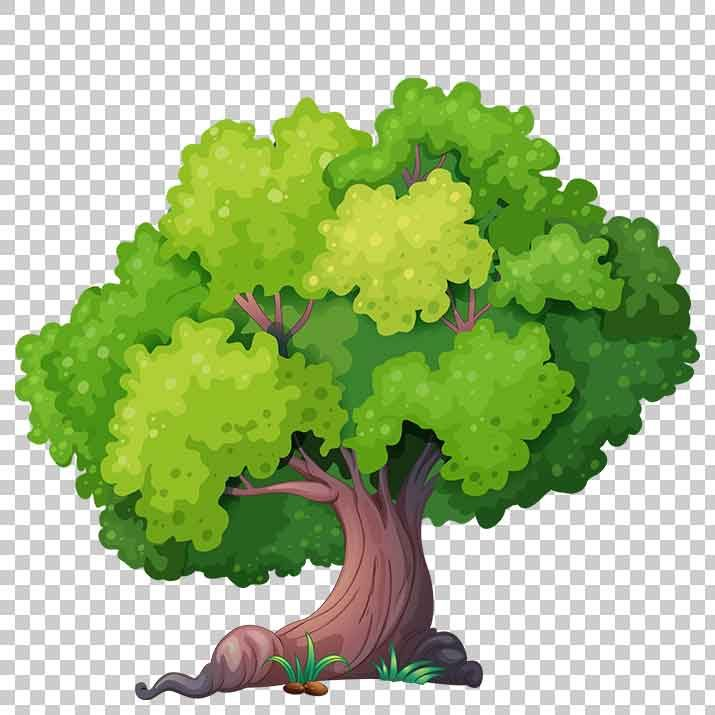 Transparent Tree Clipart PNG Image Free Download searchpng.com.
