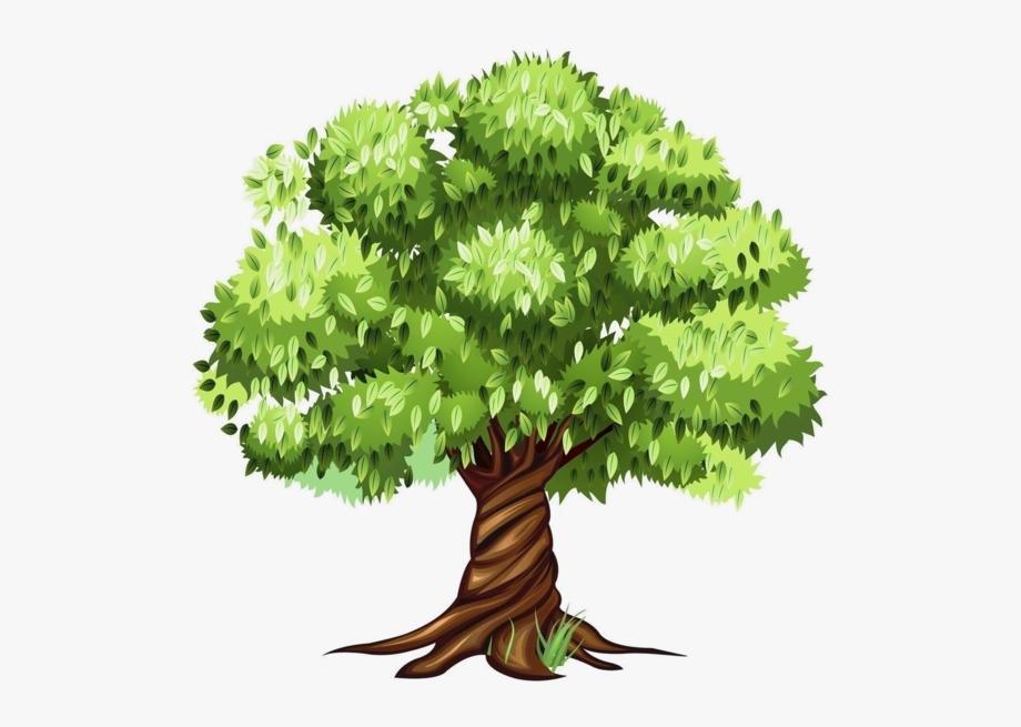 Trees ‿✿⁀°••○ Baum.