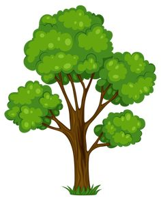 204 Best Tree Clipart images in 2019.