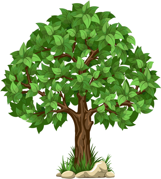 HD Graphic Transparent Download For Tree.