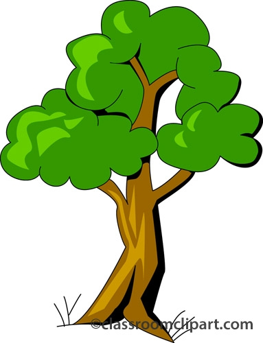 Trees clipart no background.