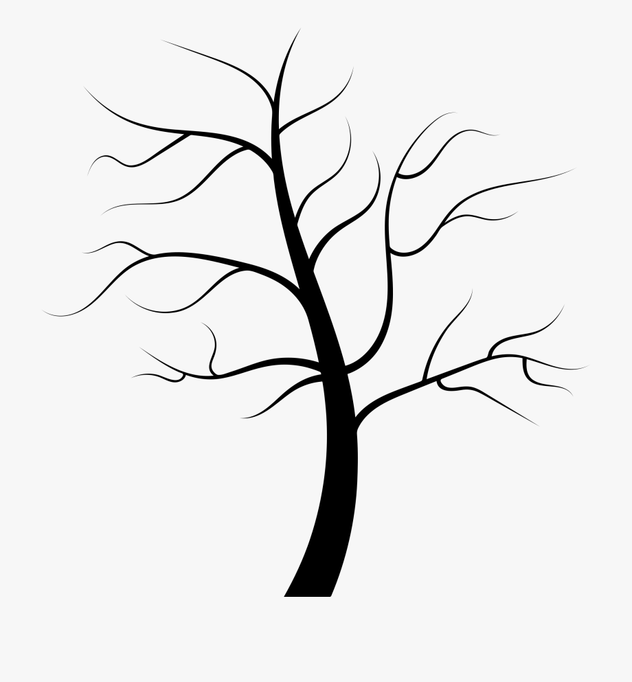 Image Freeuse Library Tree Clipart Black And White.