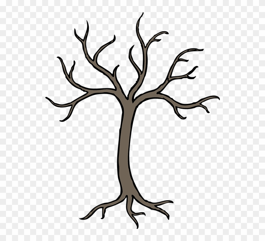 Tree, Winter, Grey, Perennial, Dried, No Leaves.