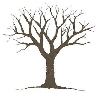 Free Leafless Tree Outline Printable, Download Free Clip Art.