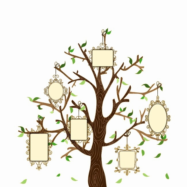Tree branch clipart png Elegant Family Tree Vectors PSD and.