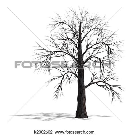 Clip Art of 3D Render of a dead tree without leafs k2002502.