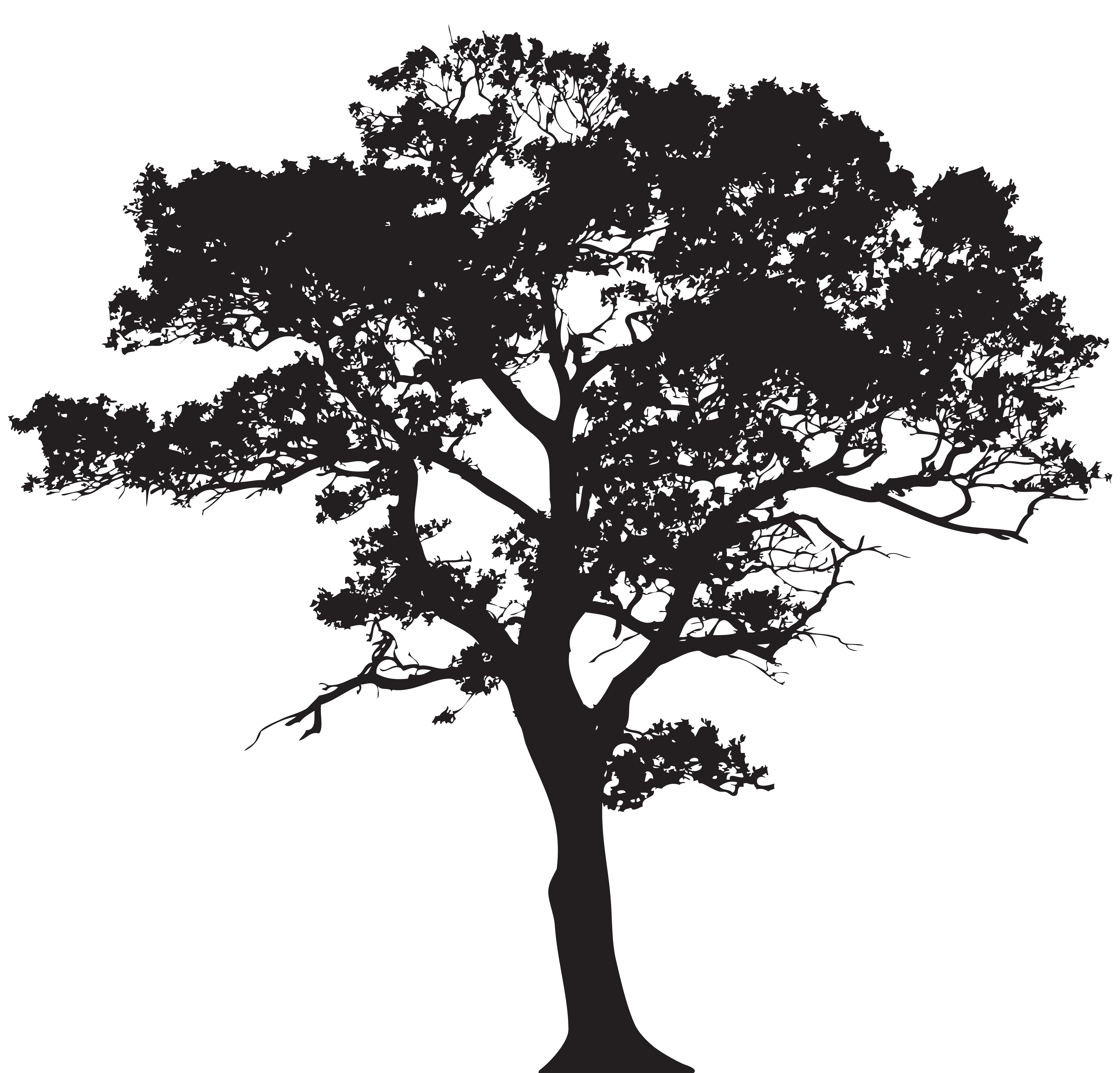 Silhouette Tree PNG Clip Art Image.