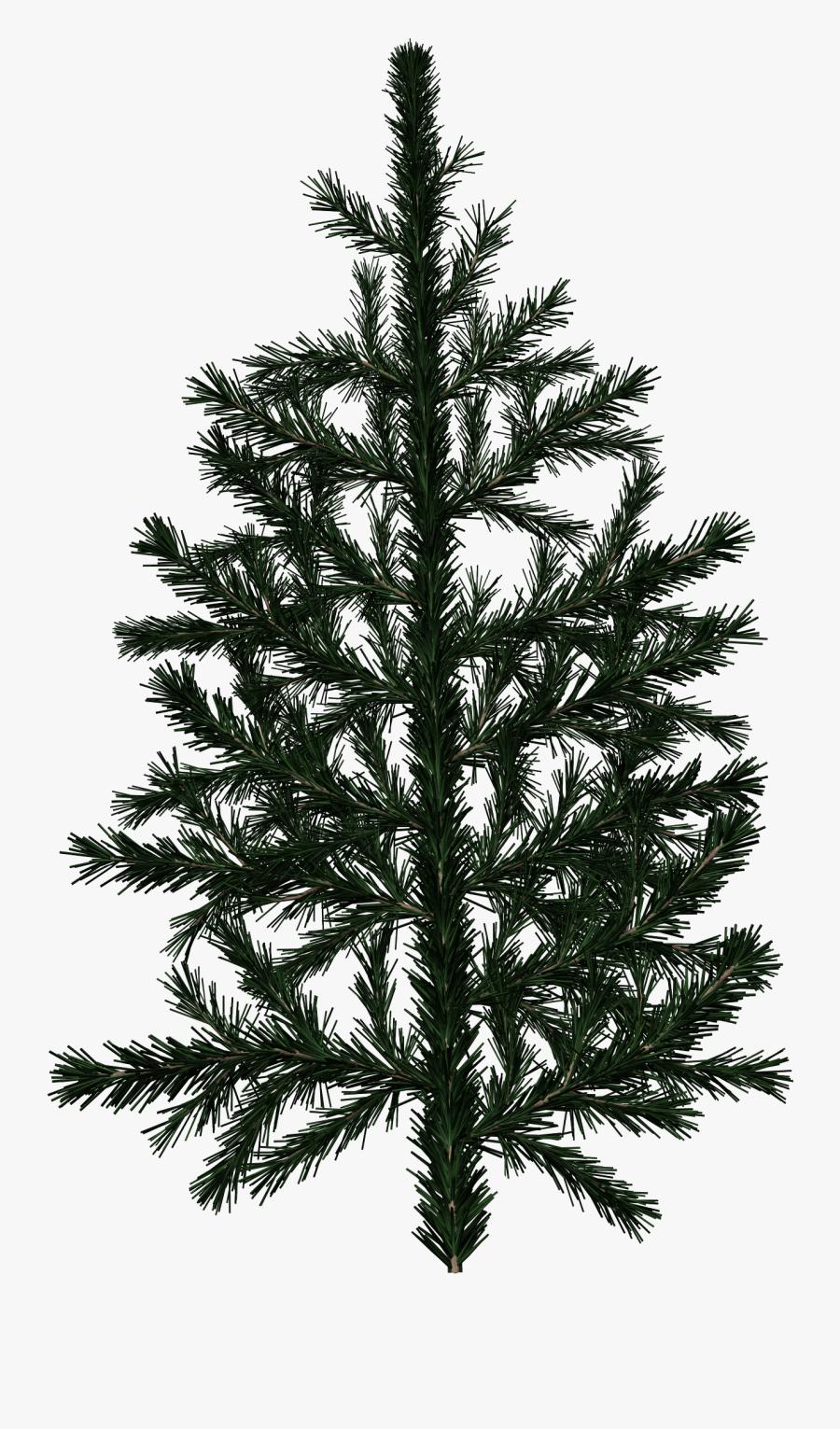 Clip Art Branch Texture.